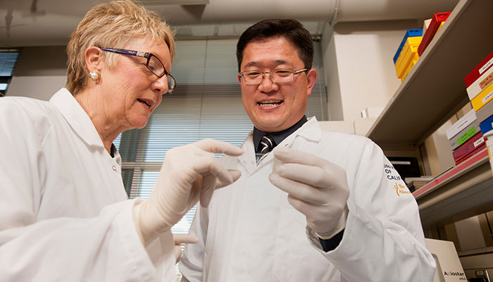Dr. Diana Farmer and Dr. Aijun Wang collaborate to develop a stem cell treatment for spina bifida